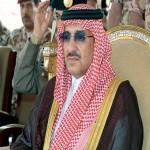 سمو الأمير محمد بن نايف
