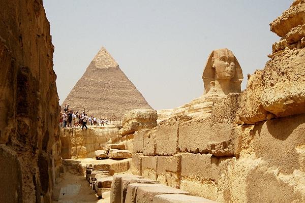 """""""الآثار المصرية"""" توفر بطاقة لزيارة المتاحف بأسعار مخفضة للسائحين"""