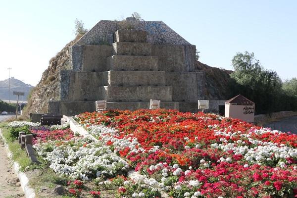 """زراعة """"1.2"""" مليون شتلة زهور وورد بلدي في شوارع وحدائق الطائف"""