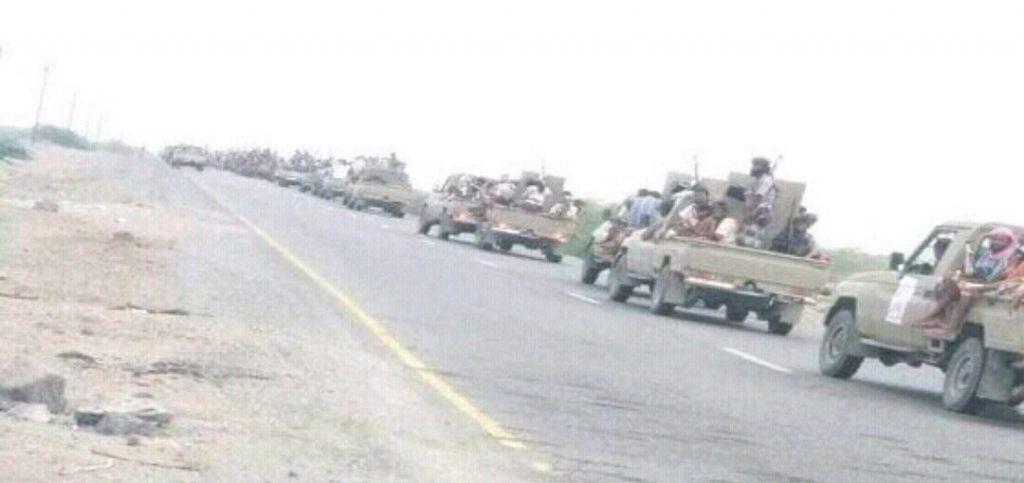 الحكومة اليمنية: تحرير الحديدة سيؤمن الملاحة في باب المندب  ويقطع أيادي إيران
