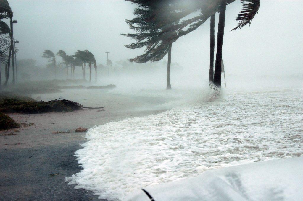 الإعصار شانشان باليابان يتسبب في أضرار مادية وبشرية