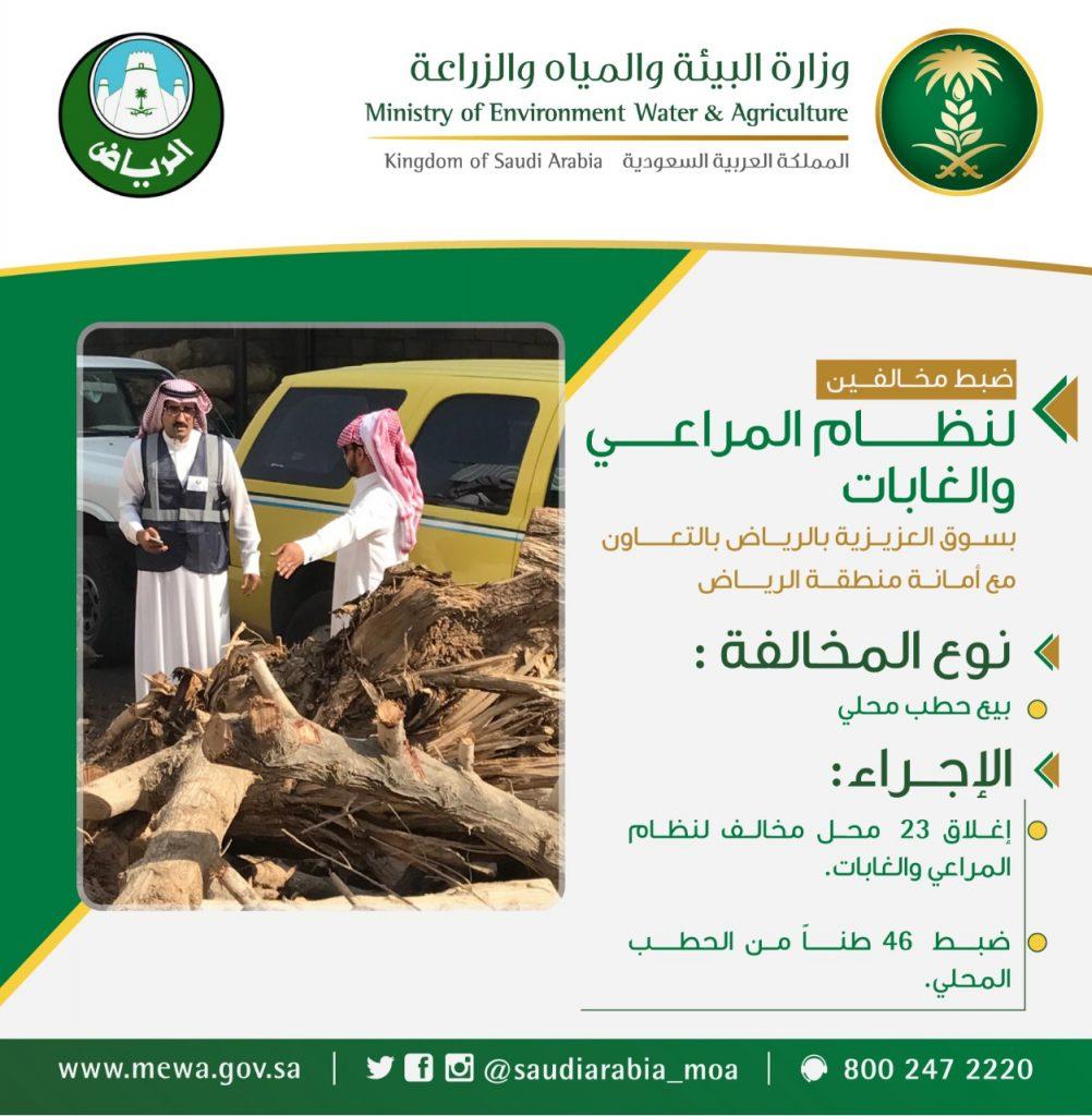 وزارة البيئة تضبط مايقارب 46 طناً من الحطب المحلي بالعزيزية