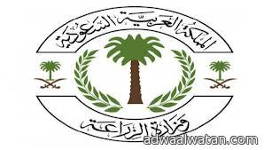 الزراعة السعودية تفرض غرامة 400 ألف ريال لمخالفة نظام مزاولة