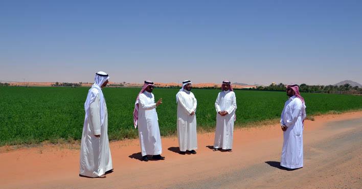 سياحة حائل تحول الريف إلى سياحة زراعية