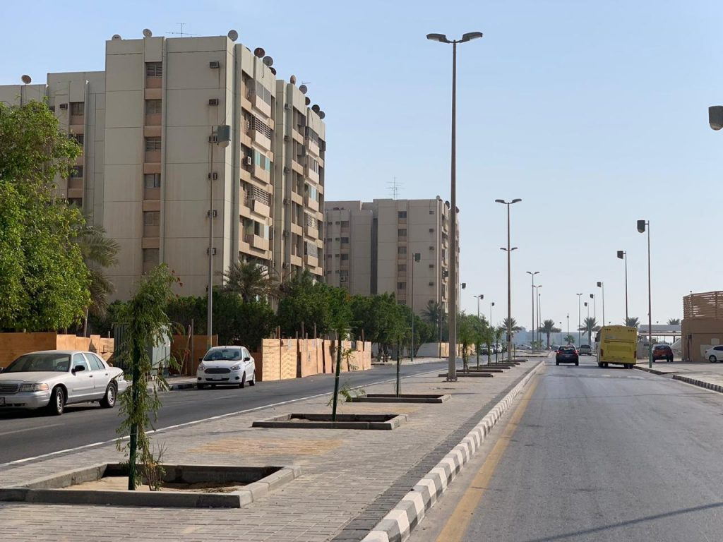 """بلدية الخبر : زراعة """"3528"""" شجرة خلال """"3"""" أشهر"""